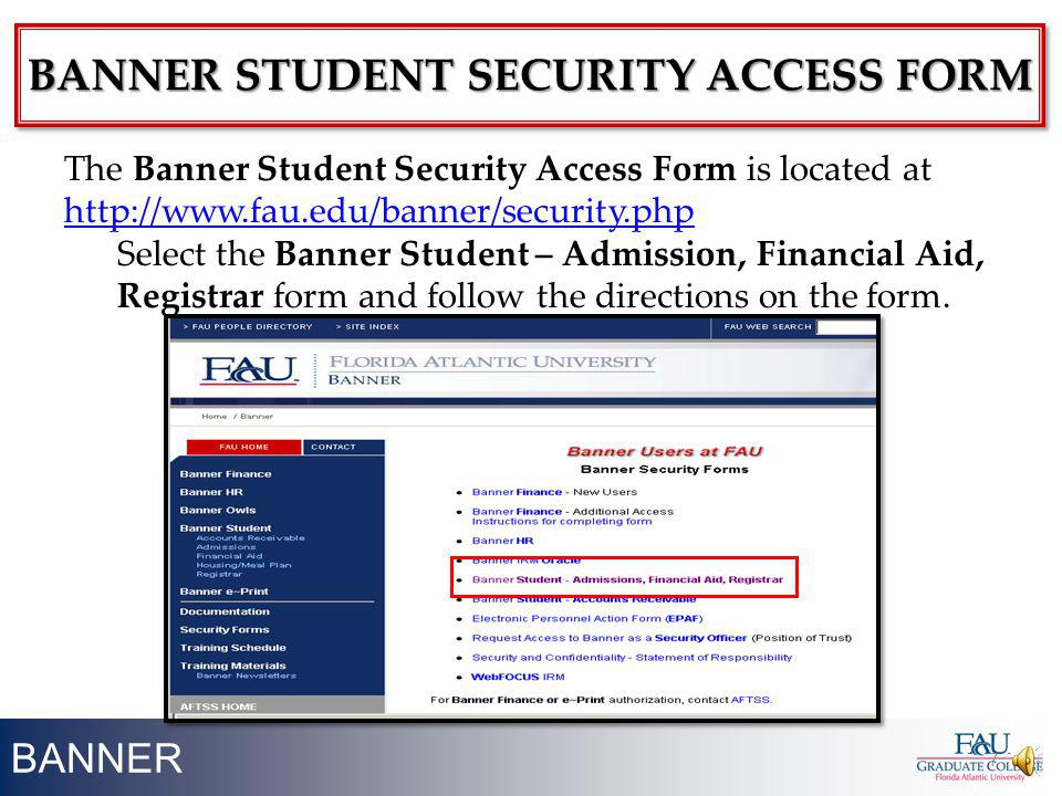 BANNER student security access form
