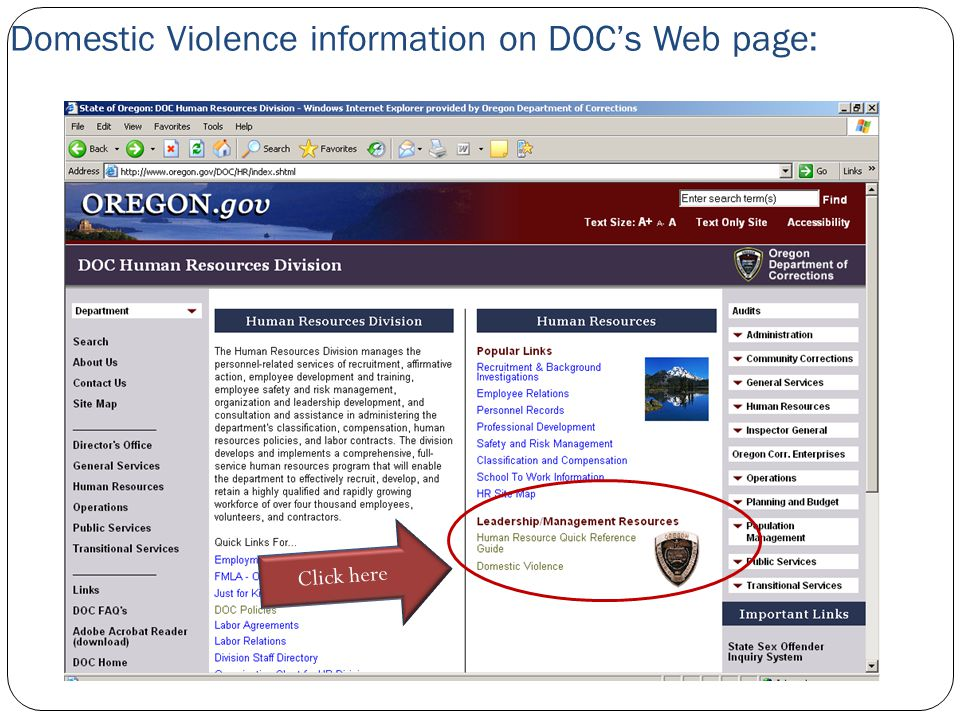 Domestic Violence information on DOC's Web page: