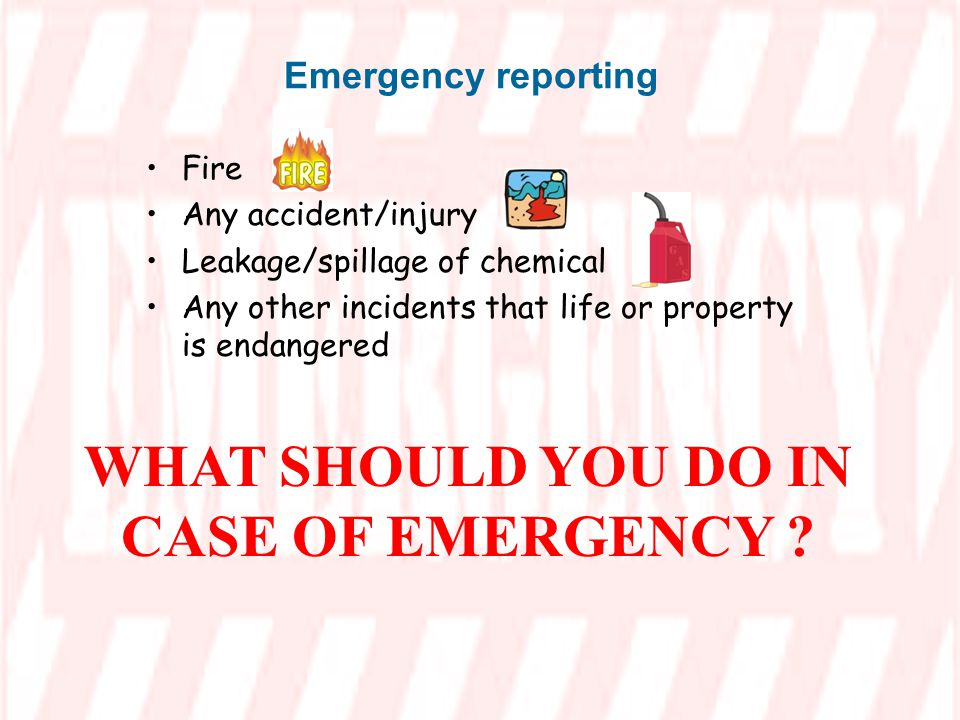 WHAT SHOULD YOU DO IN CASE OF EMERGENCY