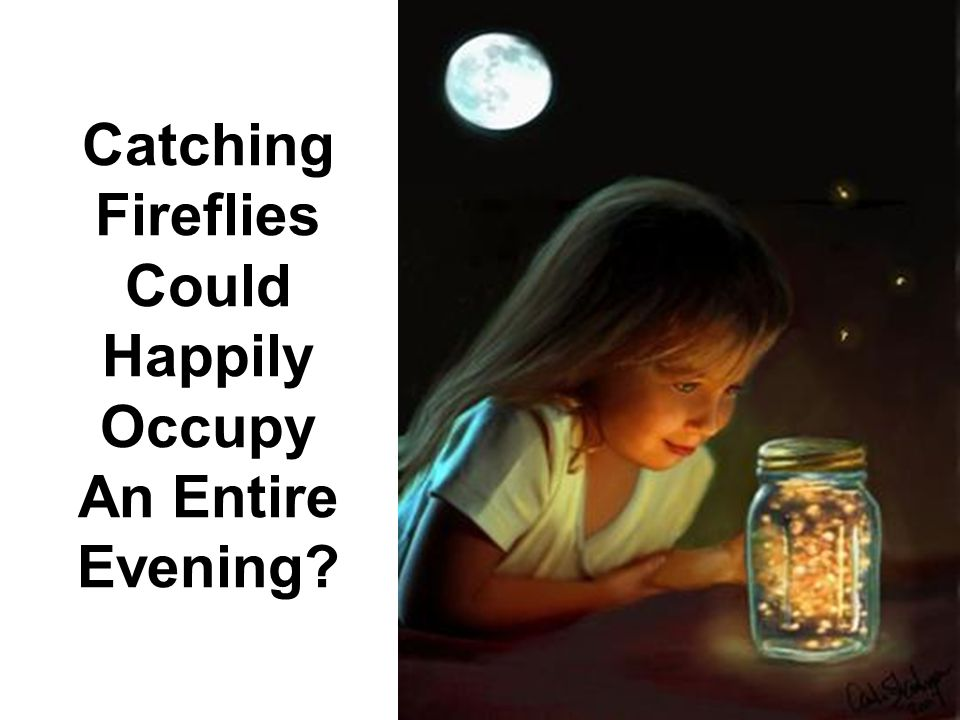 Catching Fireflies Could Happily Occupy An Entire Evening