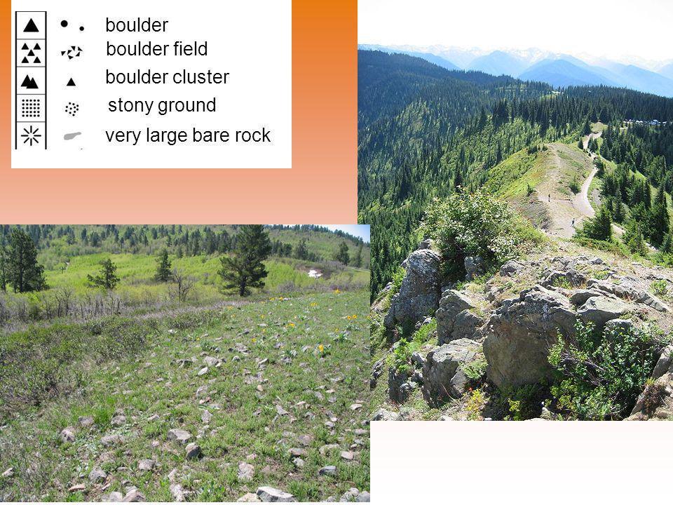 boulder boulder field boulder cluster stony ground very large bare rock