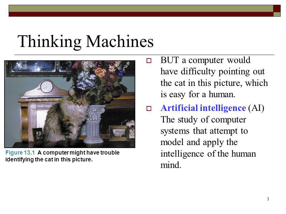 Thinking Machines BUT a computer would have difficulty pointing out the cat in this picture, which is easy for a human.