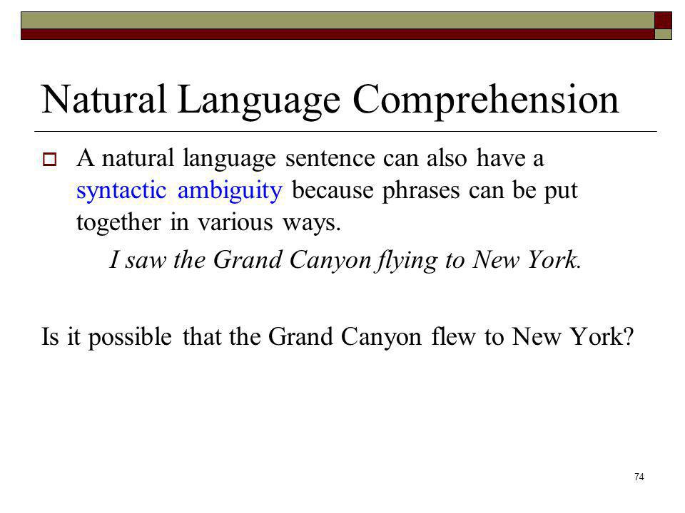 Natural Language Comprehension