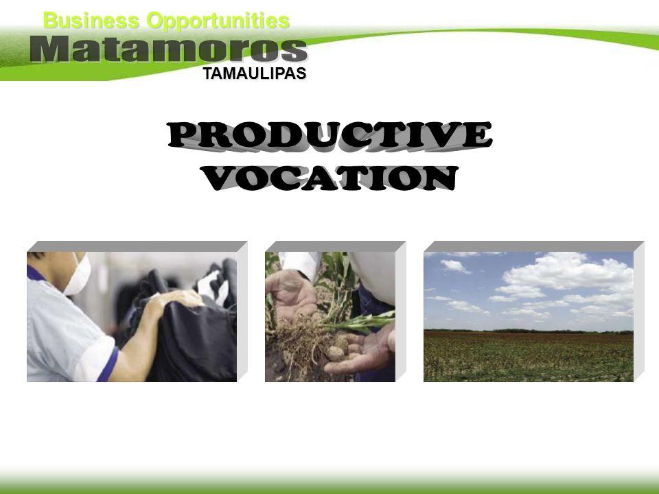 PRODUCTIVE VOCATION