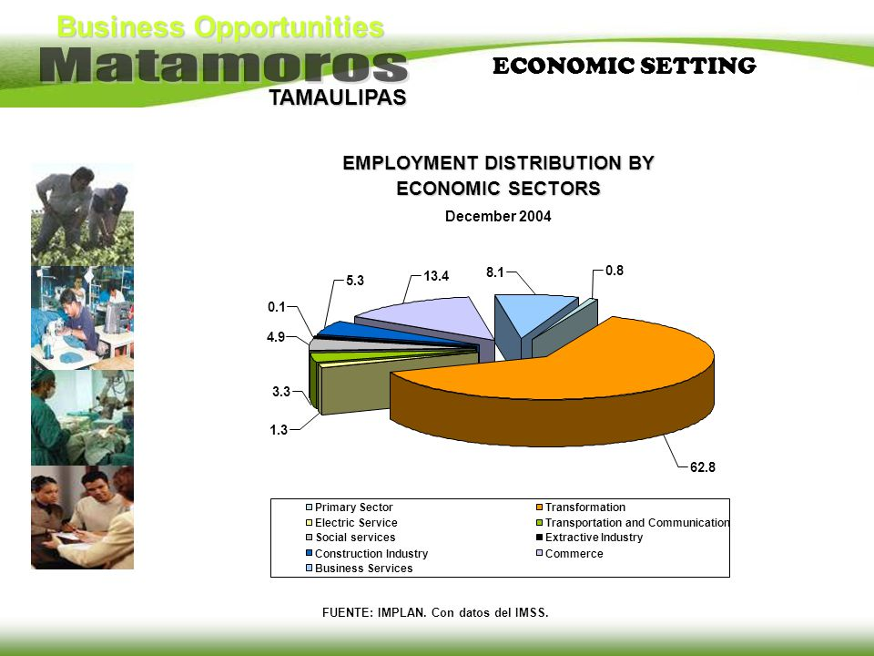 EMPLOYMENT DISTRIBUTION BY ECONOMIC SECTORS