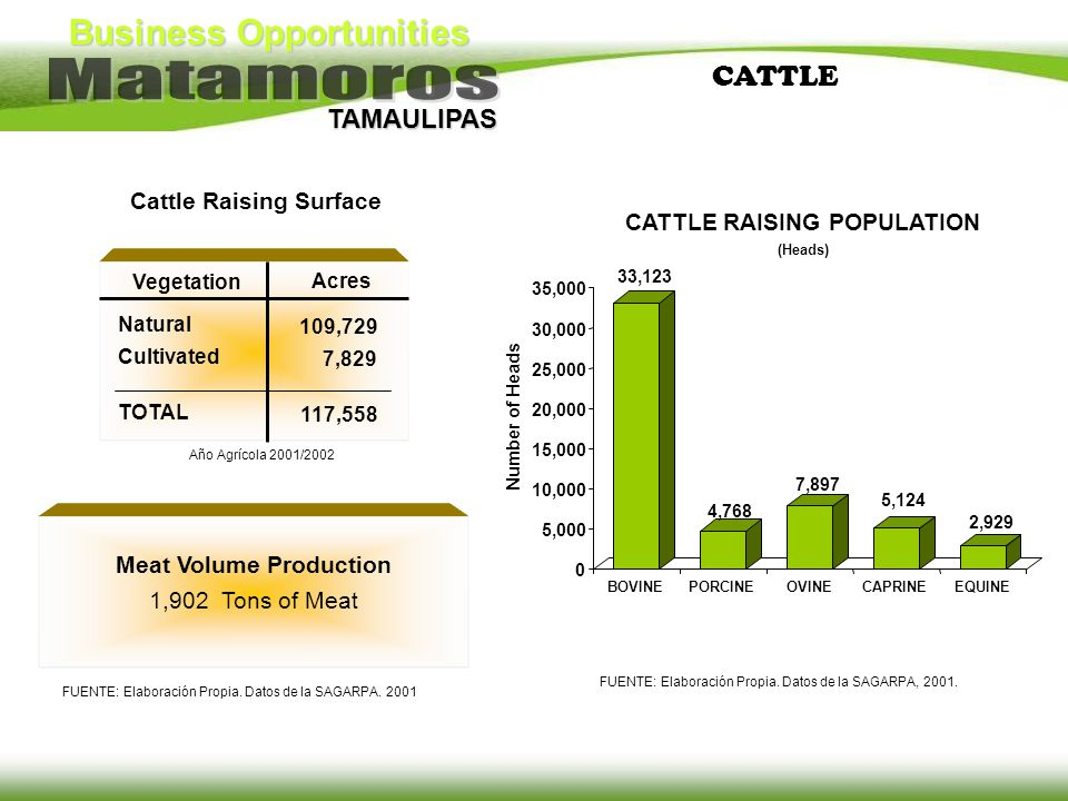 Cattle Raising Surface