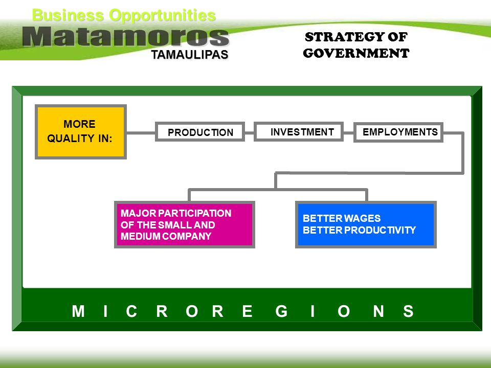 STRATEGY OF GOVERNMENT