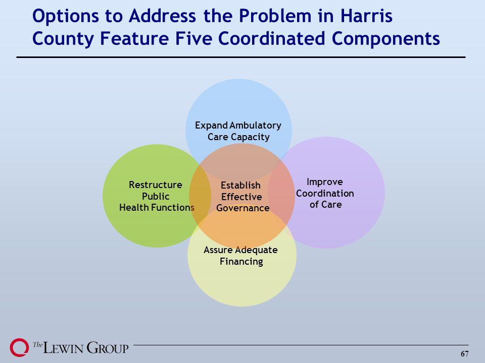 Options to Address the Problem in Harris County Feature Five Coordinated Components