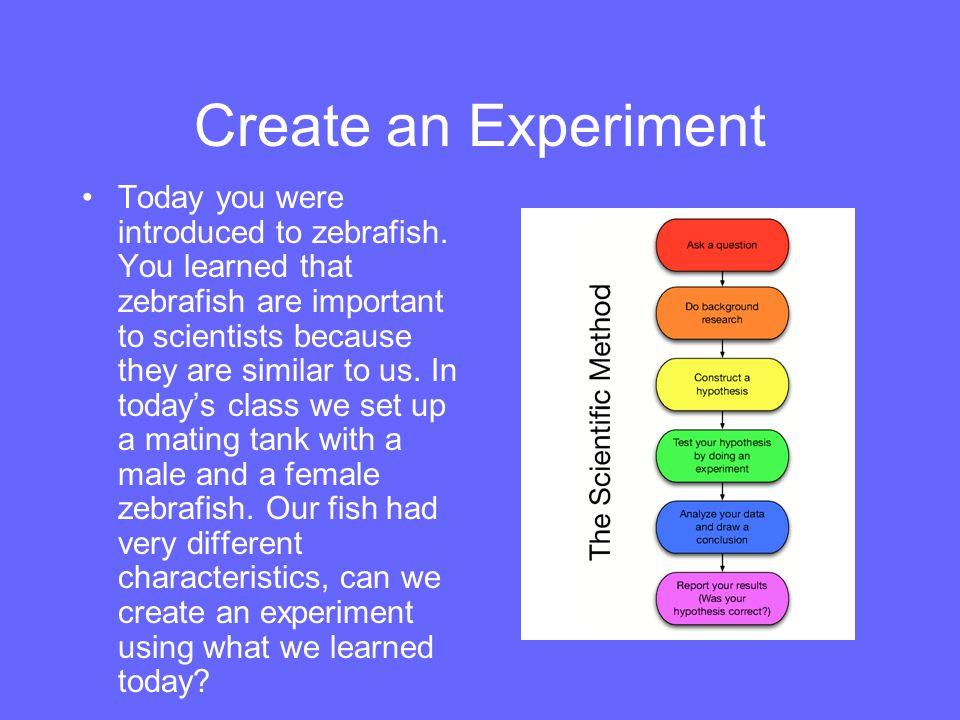 Create an Experiment