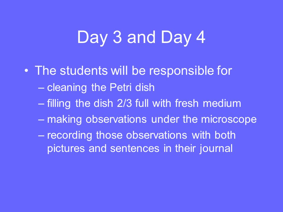 Day 3 and Day 4 The students will be responsible for