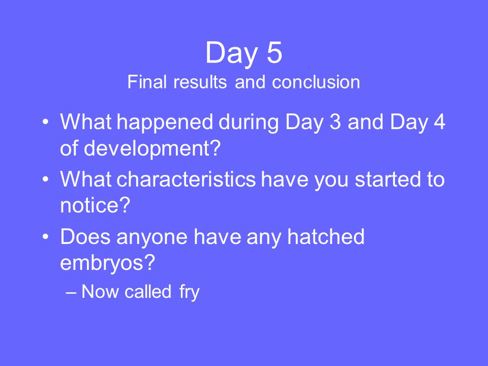 Day 5 Final results and conclusion