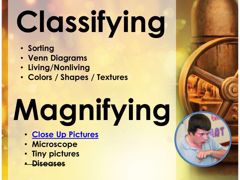 Classifying Magnifying