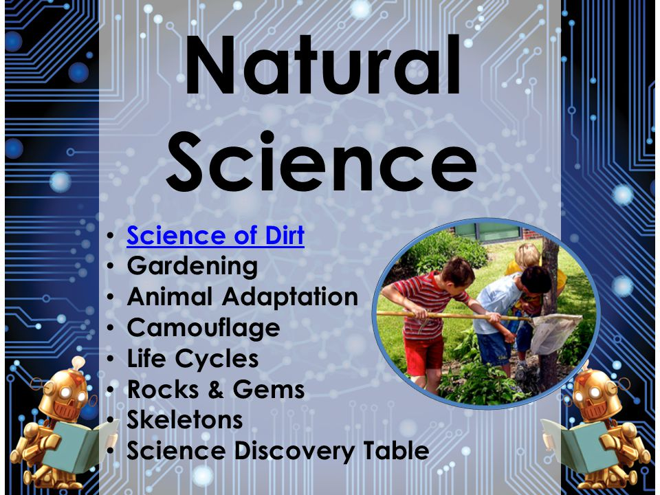 Natural Science Science of Dirt Gardening Animal Adaptation Camouflage