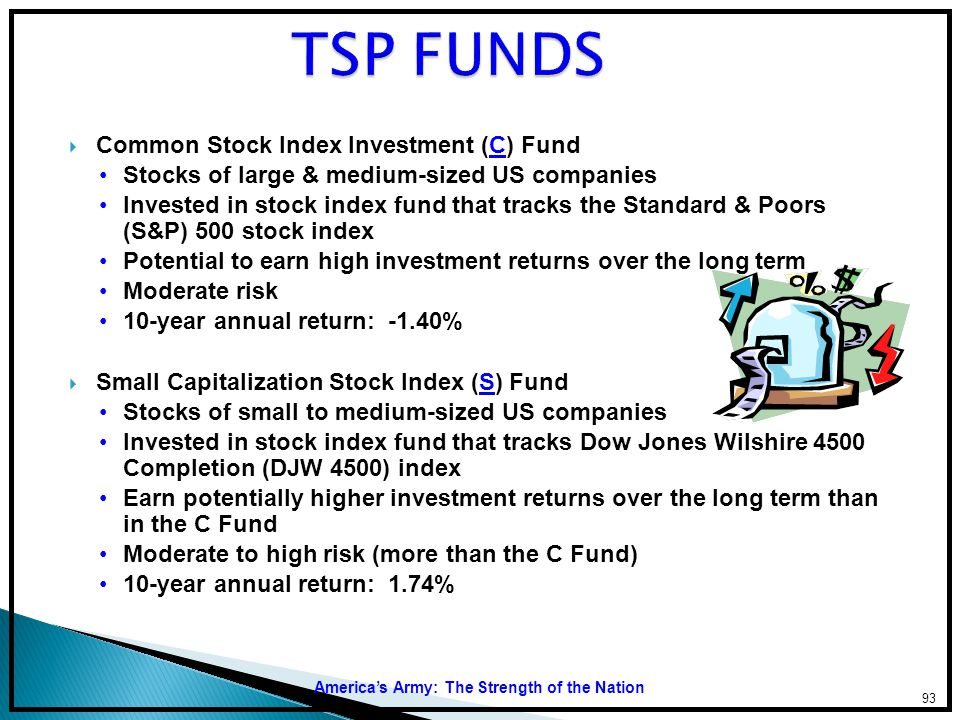 TSP FUNDS Common Stock Index Investment (C) Fund
