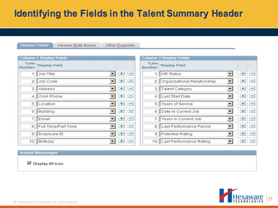 Identifying the Fields in the Talent Summary Header