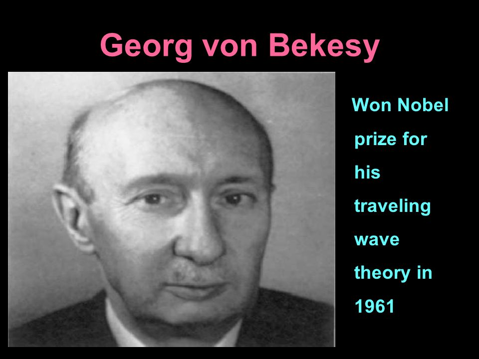 Georg von Bekesy Won Nobel prize for his traveling wave theory in 1961