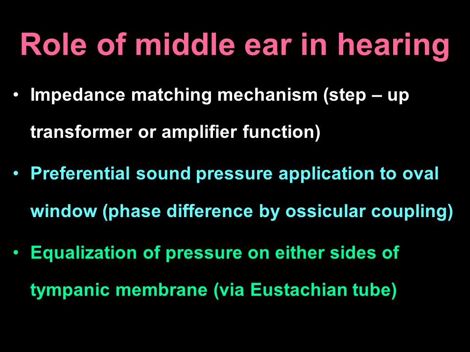 Role of middle ear in hearing