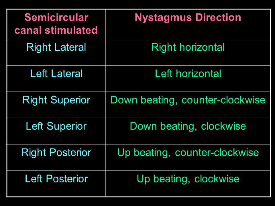 Semicircular canal stimulated