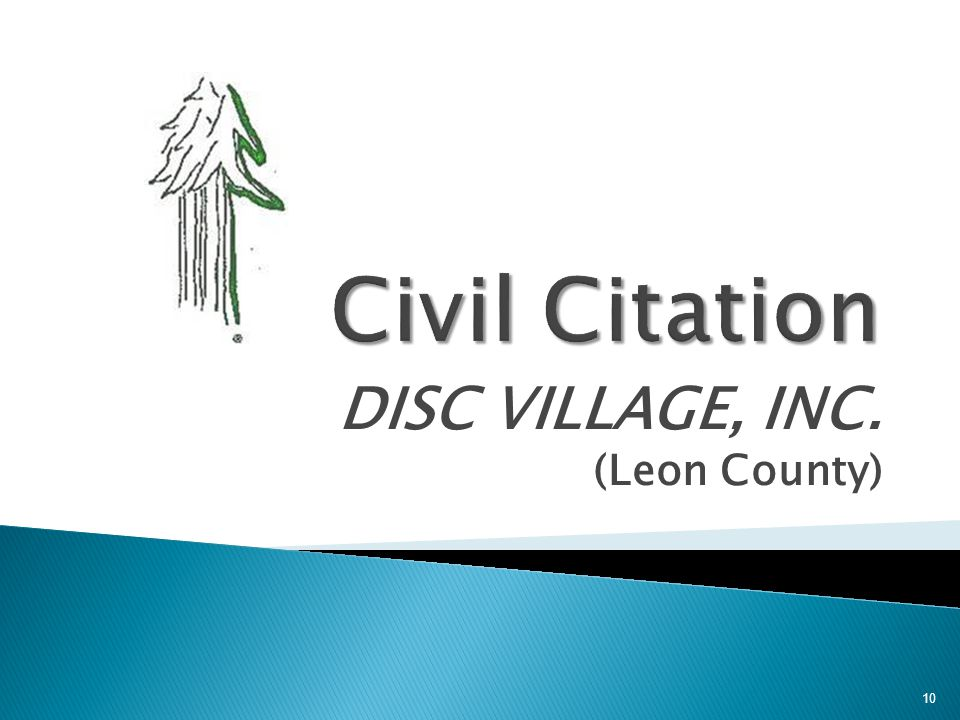 DISC VILLAGE, INC. (Leon County)