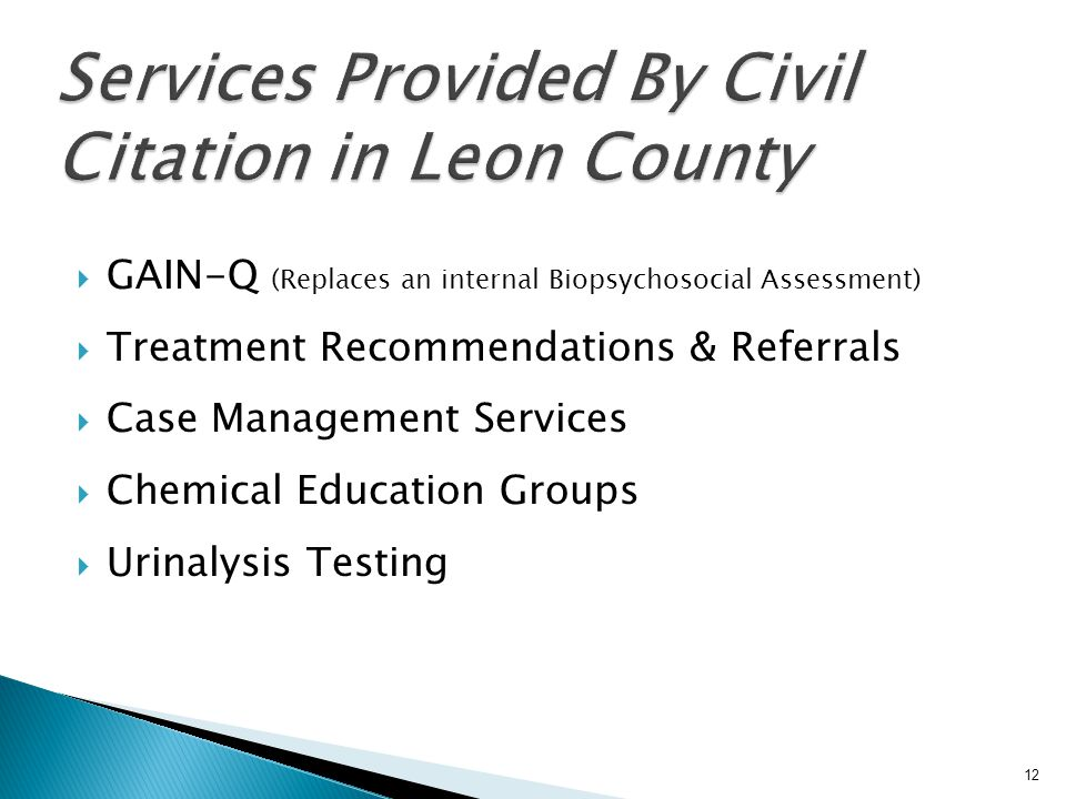 Services Provided By Civil Citation in Leon County