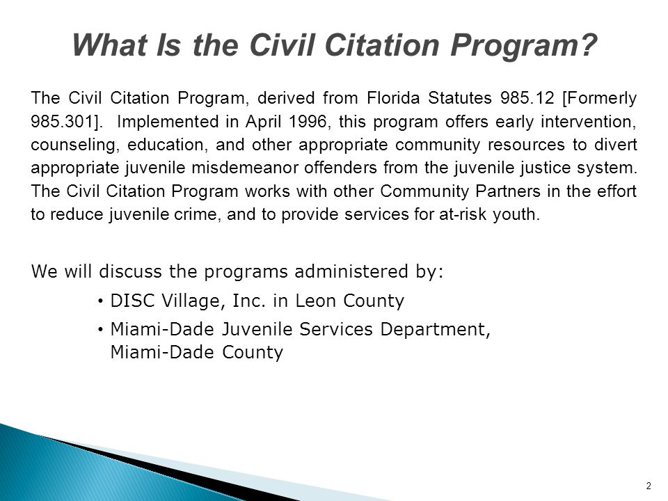 What Is the Civil Citation Program