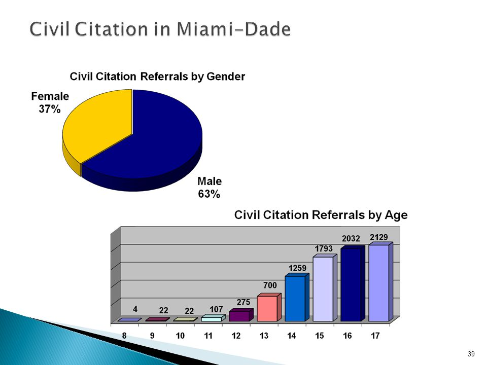 Civil Citation in Miami-Dade