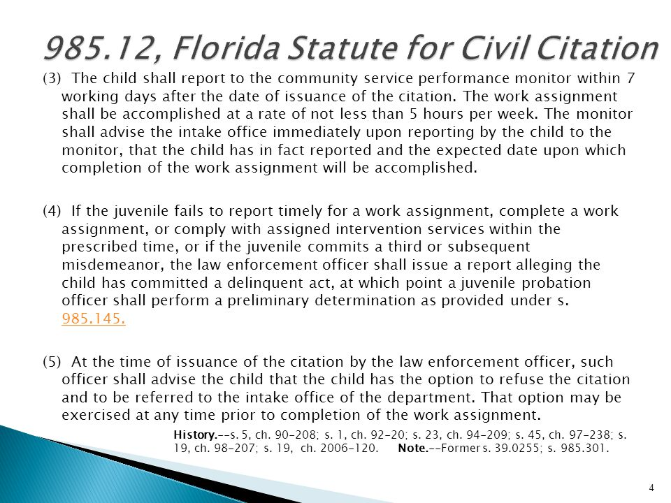 985.12, Florida Statute for Civil Citation