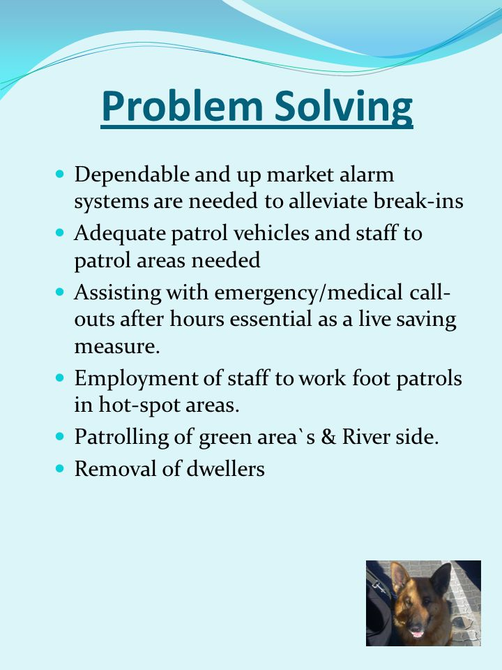 Problem Solving Dependable and up market alarm systems are needed to alleviate break-ins. Adequate patrol vehicles and staff to patrol areas needed.