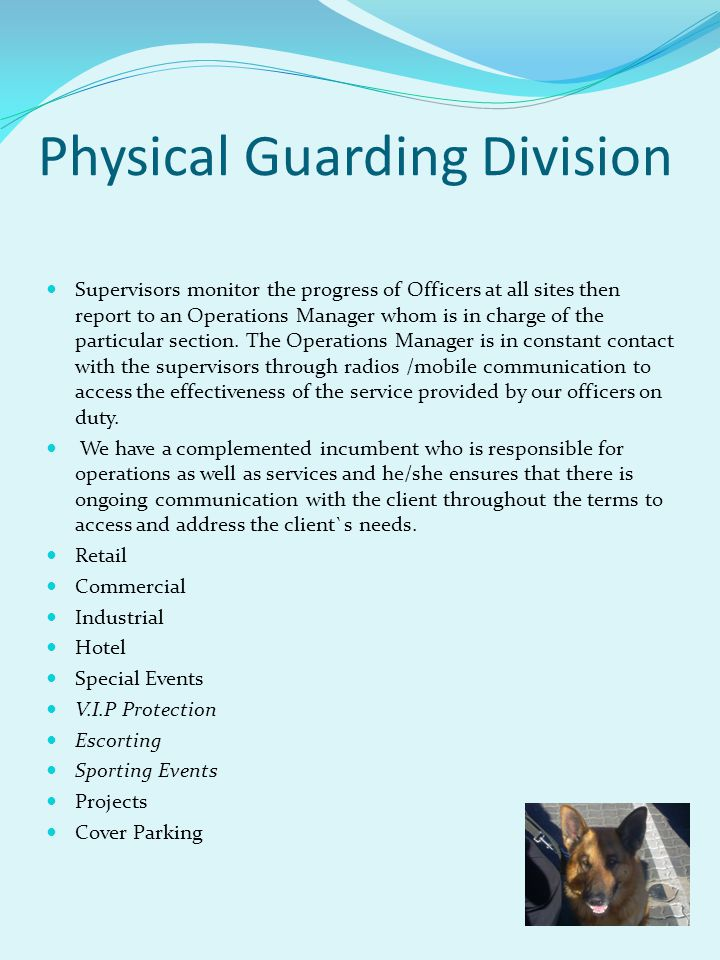 Physical Guarding Division