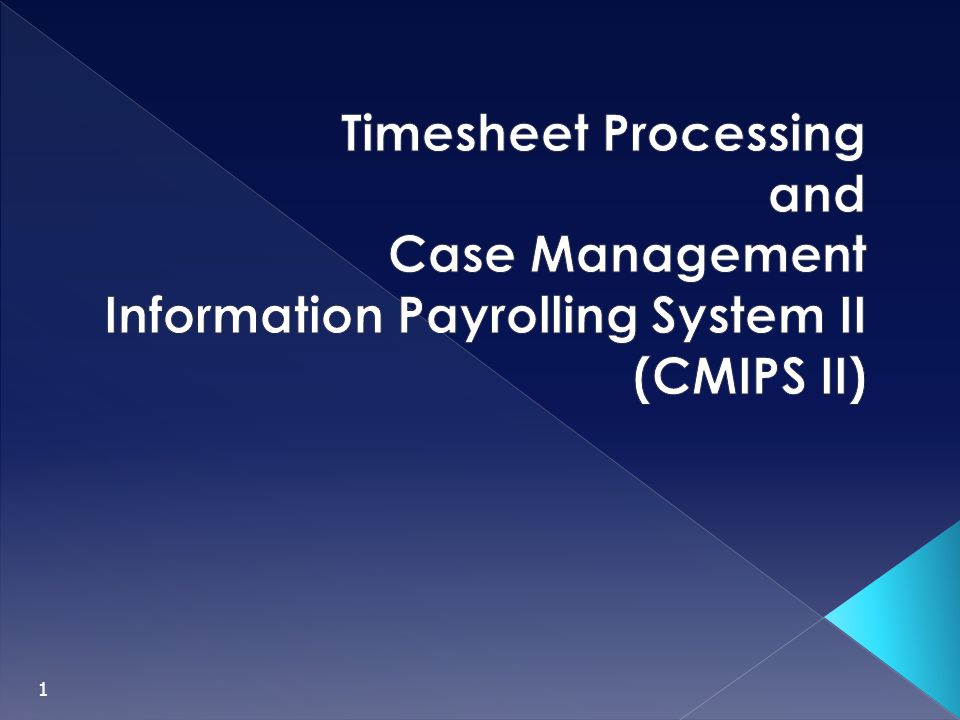 Timesheet Processing and Case Management Information Payrolling System II (CMIPS II)