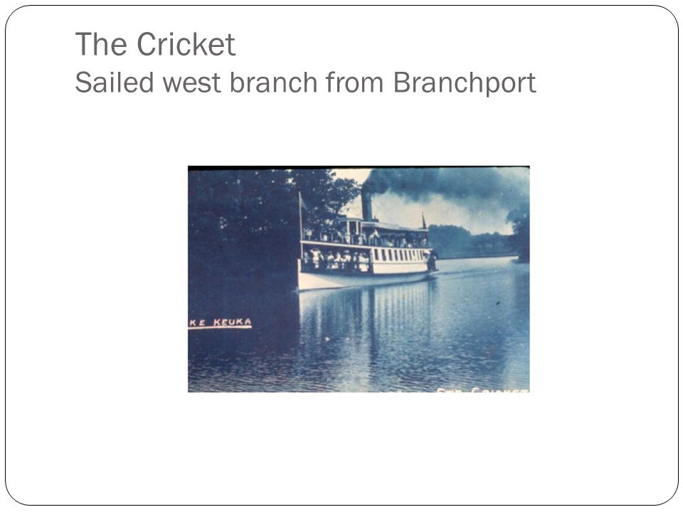 The Cricket Sailed west branch from Branchport