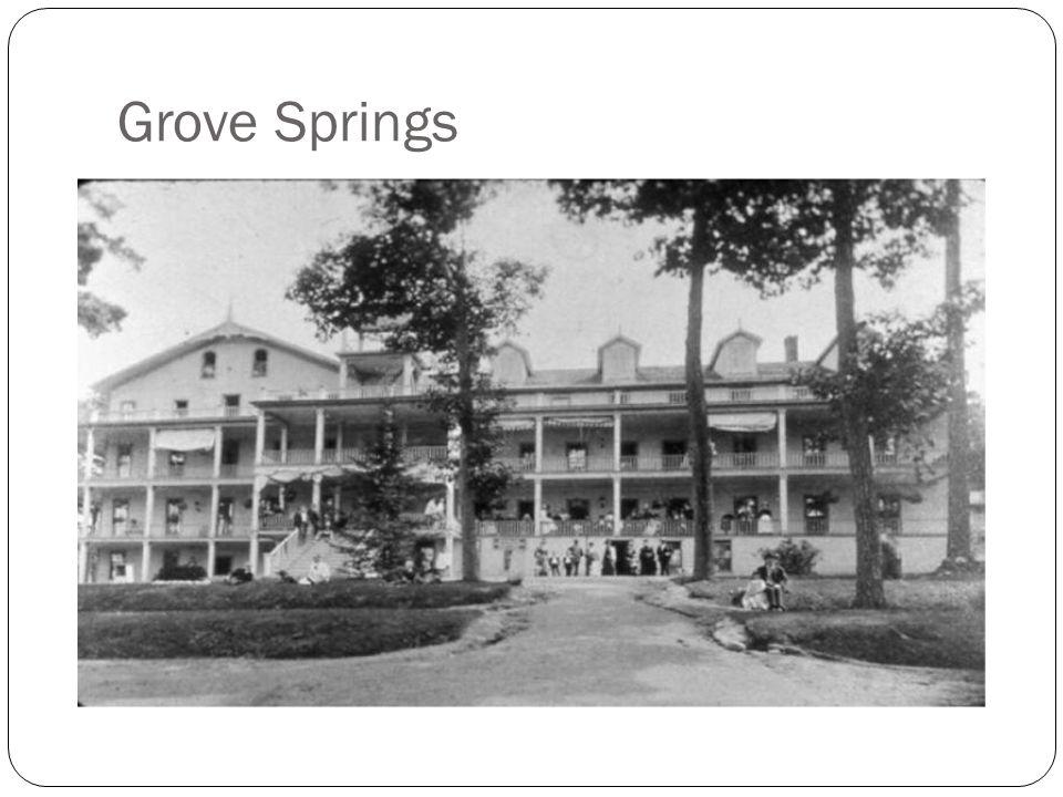 Grove Springs