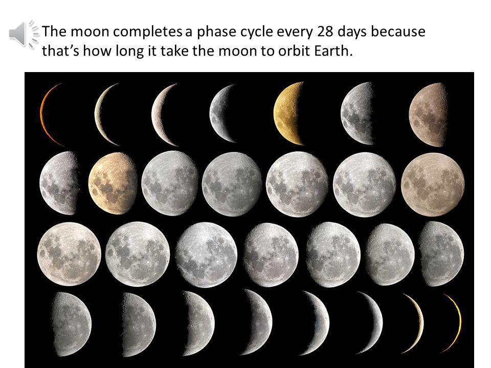 The moon completes a phase cycle every 28 days because that's how long it take the moon to orbit Earth.