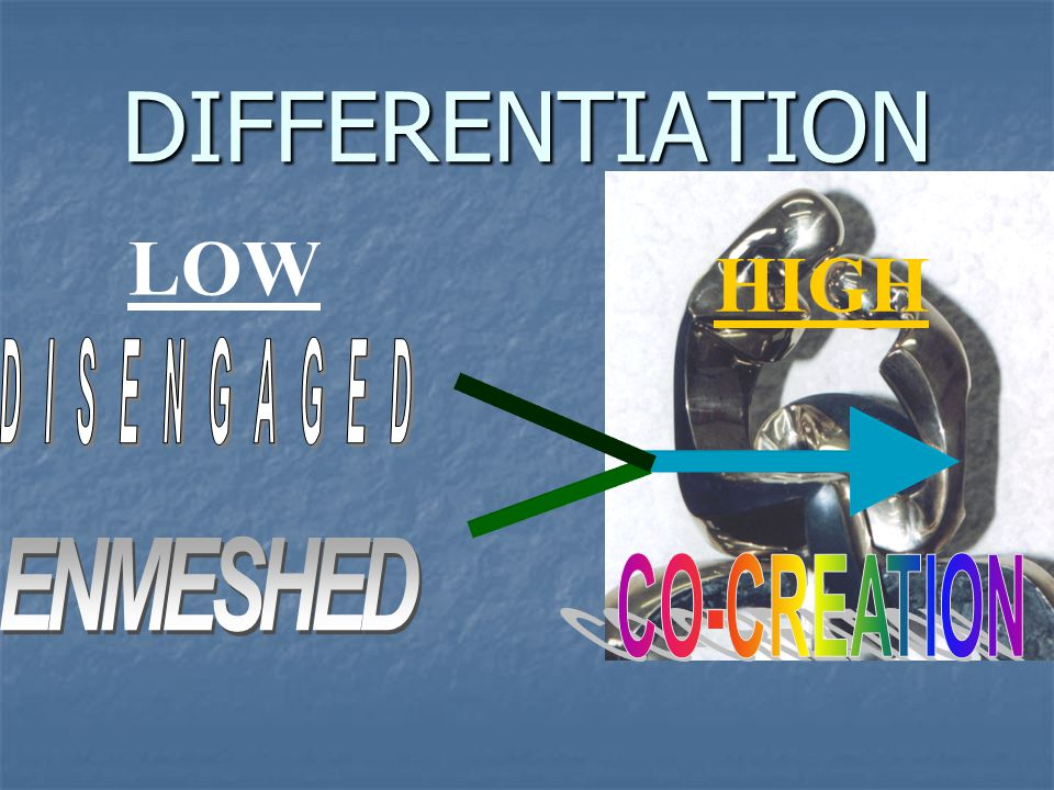 DIFFERENTIATION LOW HIGH DISENGAGED ENMESHED CO-CREATION
