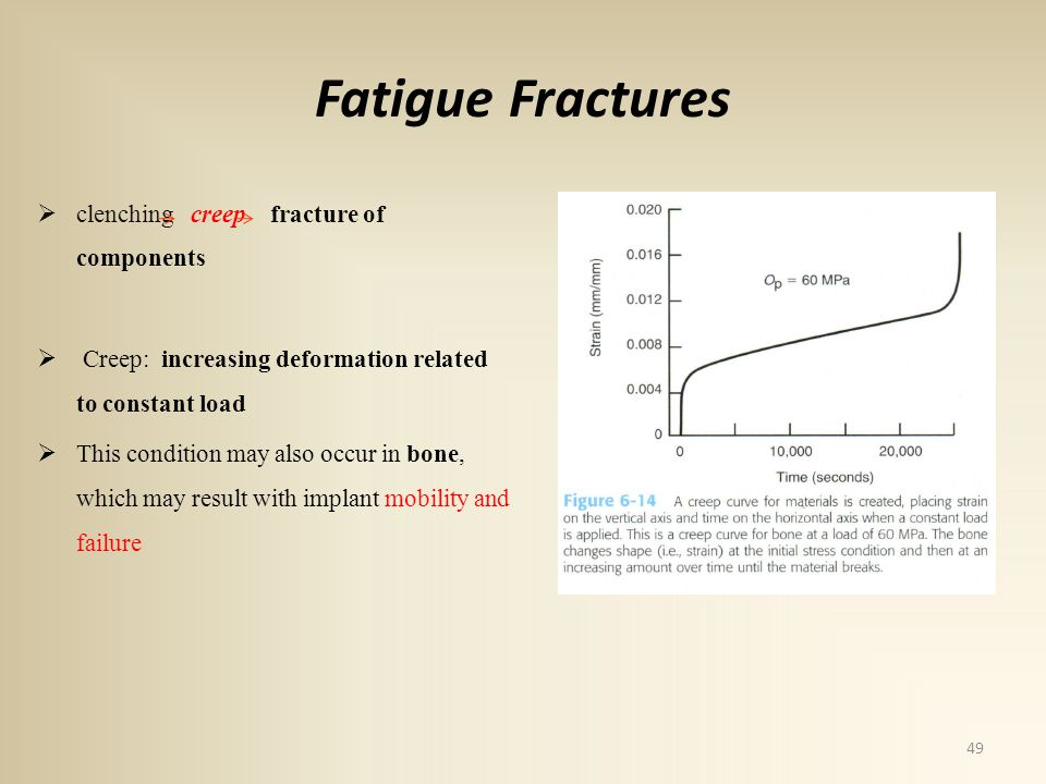 Fatigue Fractures clenching creep fracture of components