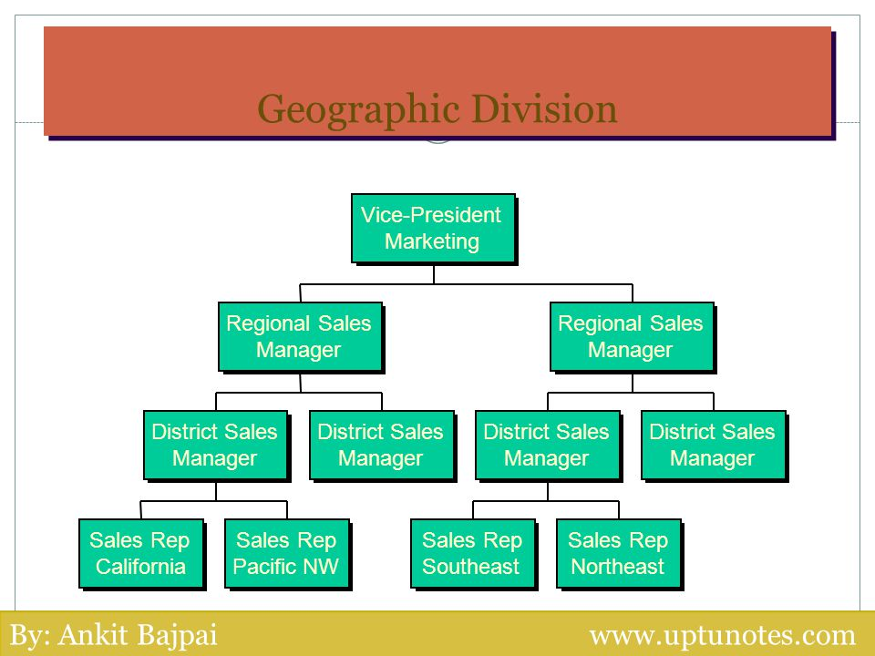 Geographic Division By: Ankit Bajpai www.uptunotes.com Vice-President