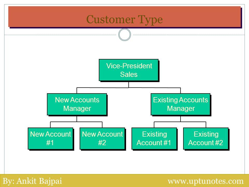 Customer Type By: Ankit Bajpai www.uptunotes.com Vice-President Sales