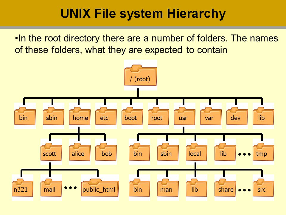 In the root directory there are a number of folders