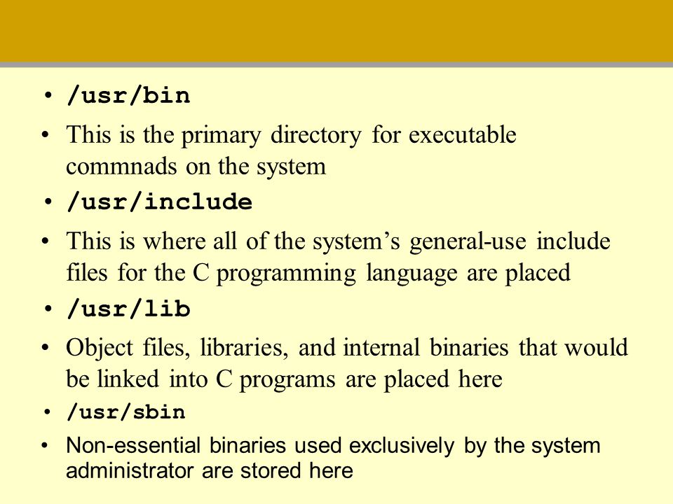 This is the primary directory for executable commnads on the system