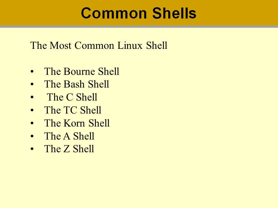 The Most Common Linux Shell