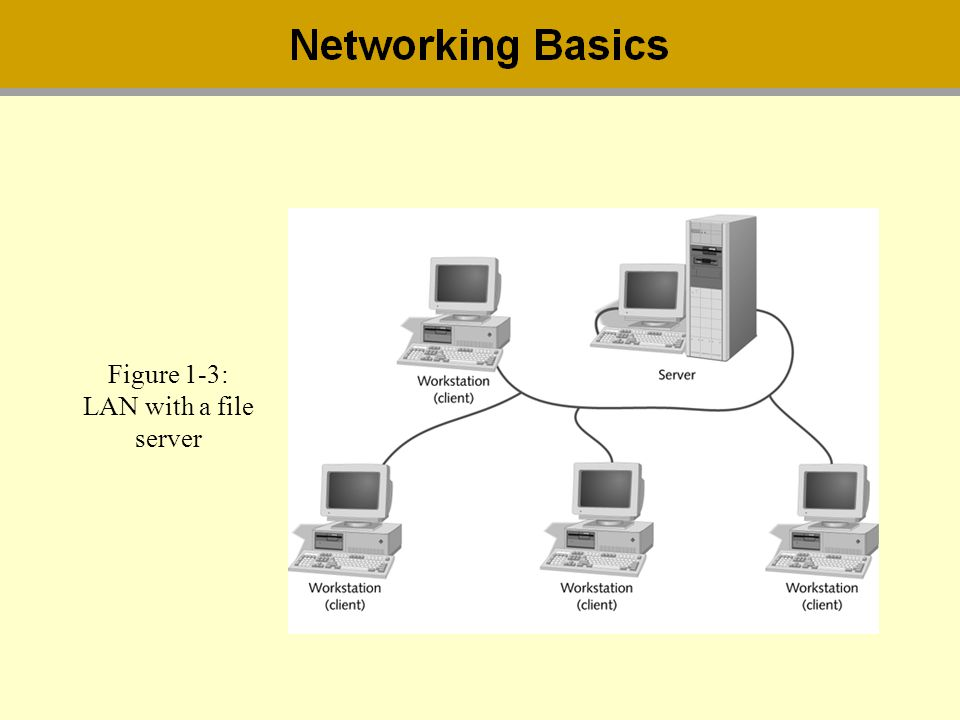 Figure 1-3: LAN with a file server