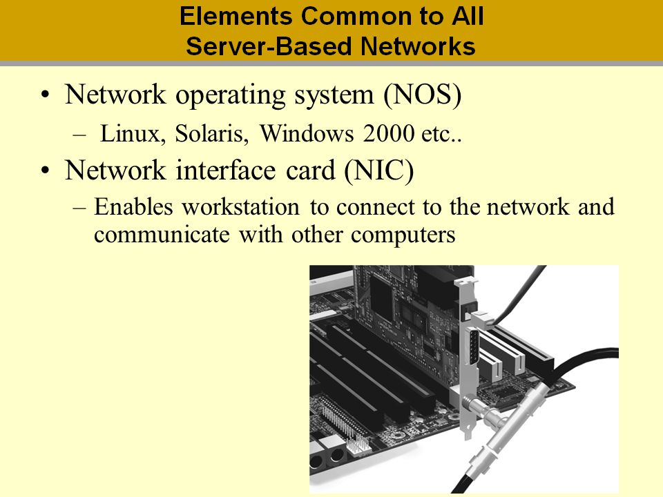 Network operating system (NOS) Network interface card (NIC)