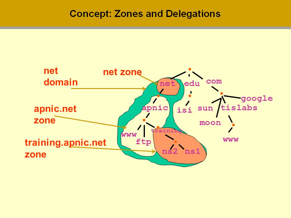 net net zone domain apnic.net zone training.apnic.net zone • com net