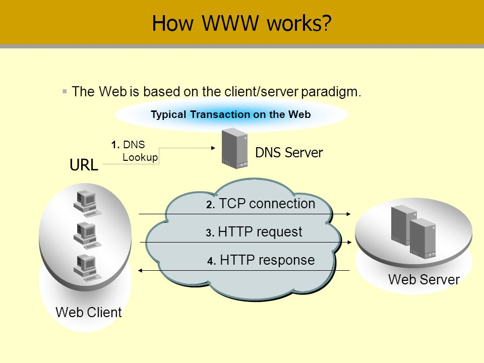 URL The Web is based on the client/server paradigm. DNS Server