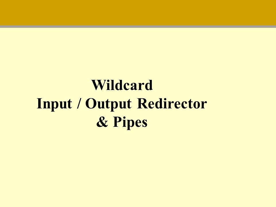 Input / Output Redirector