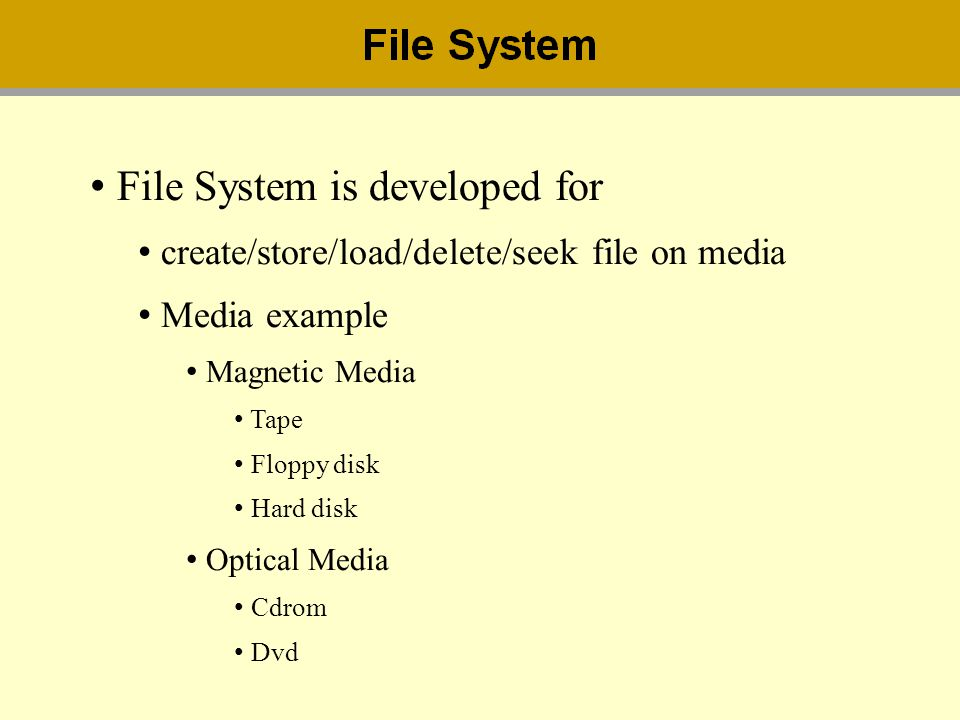 File System is developed for