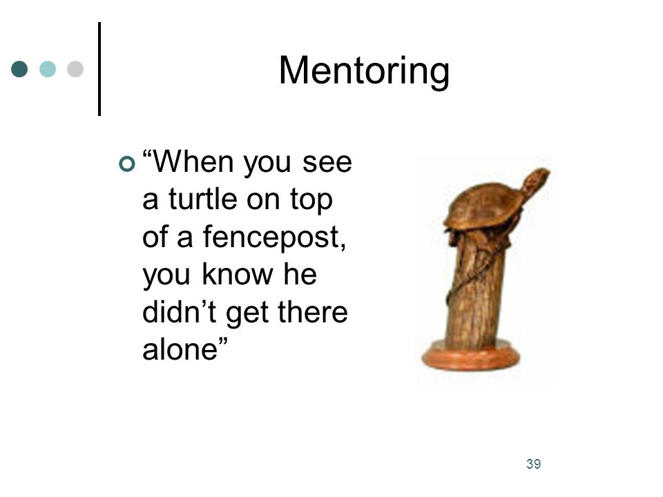 Mentoring When you see a turtle on top of a fencepost, you know he didn't get there alone
