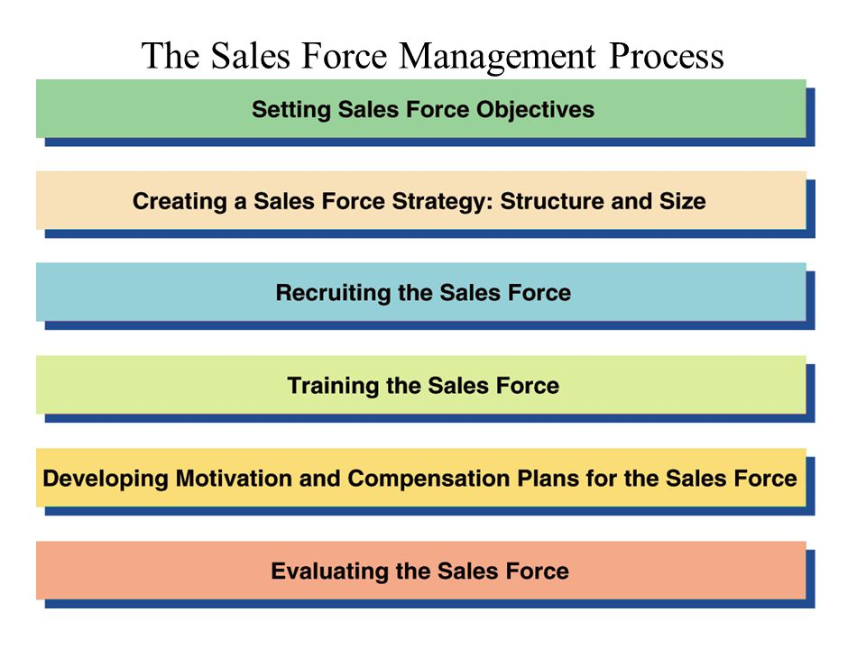 The Sales Force Management Process