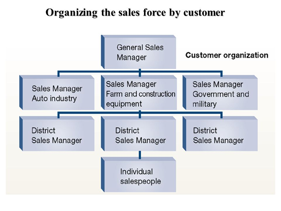 Organizing the sales force by customer
