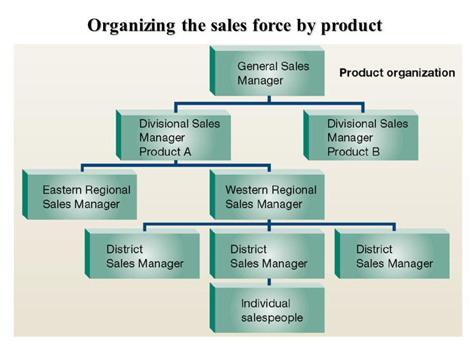 Organizing the sales force by product